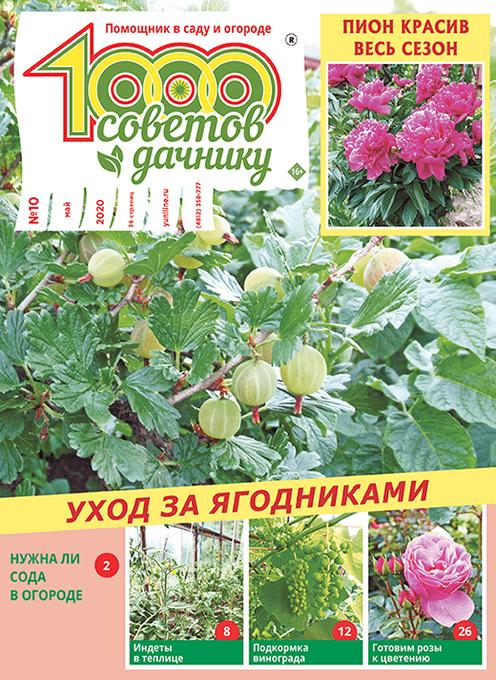 Журнал 1000 советов дачнику